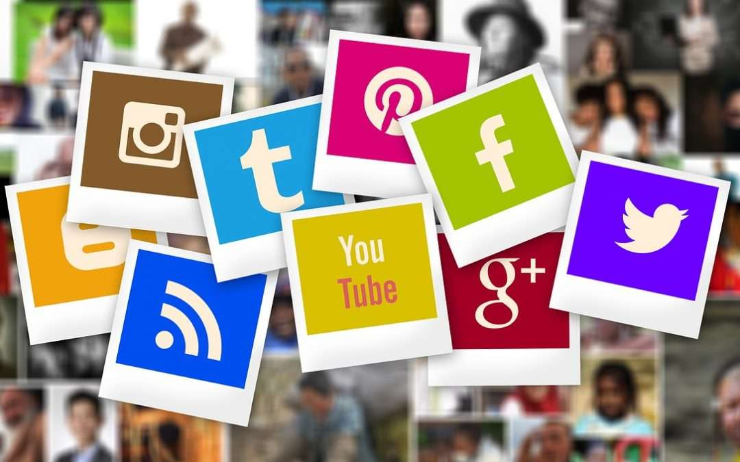 What captures your attention on social media?